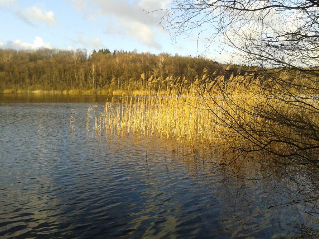 Wald und Wiesen e.V